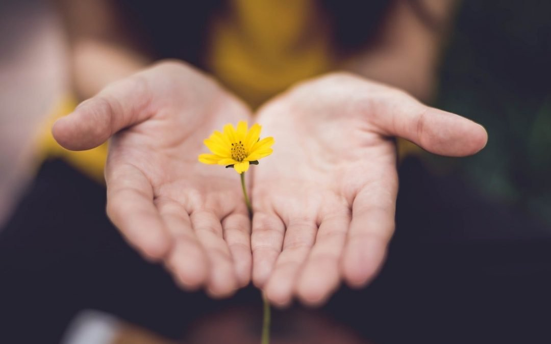 The Forgotten Power of Forgiveness