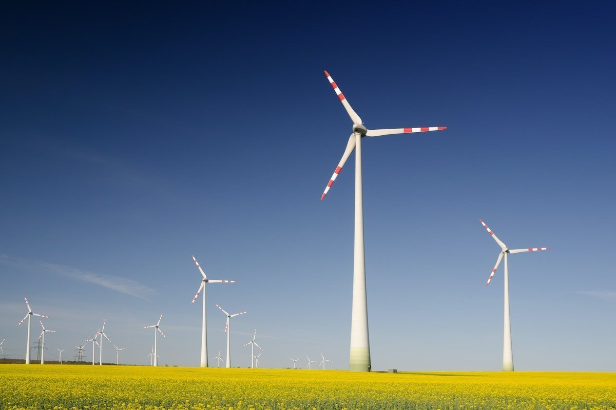 windmills in a field are good for the environment