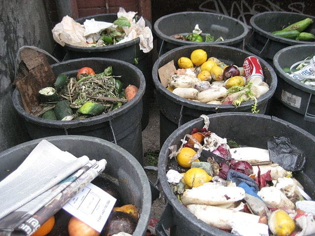 Wasting Away: Food Waste Reduction and Christian Faith